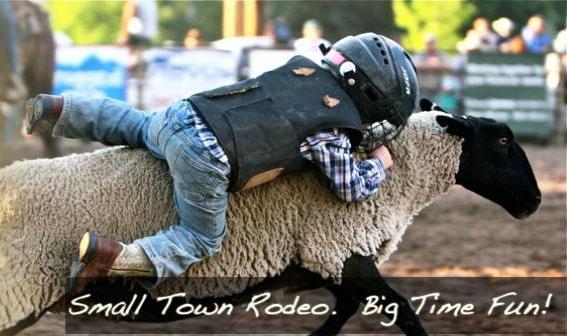 kid riding a sheep